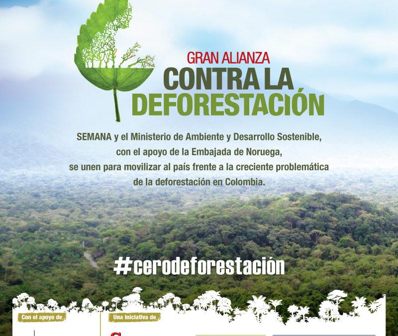 Systema Solar, uno de los embajadores en la gran alianza contra la deforestación